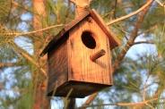 Обзор квартир-студий, или где гнездятся холостяки (фото)