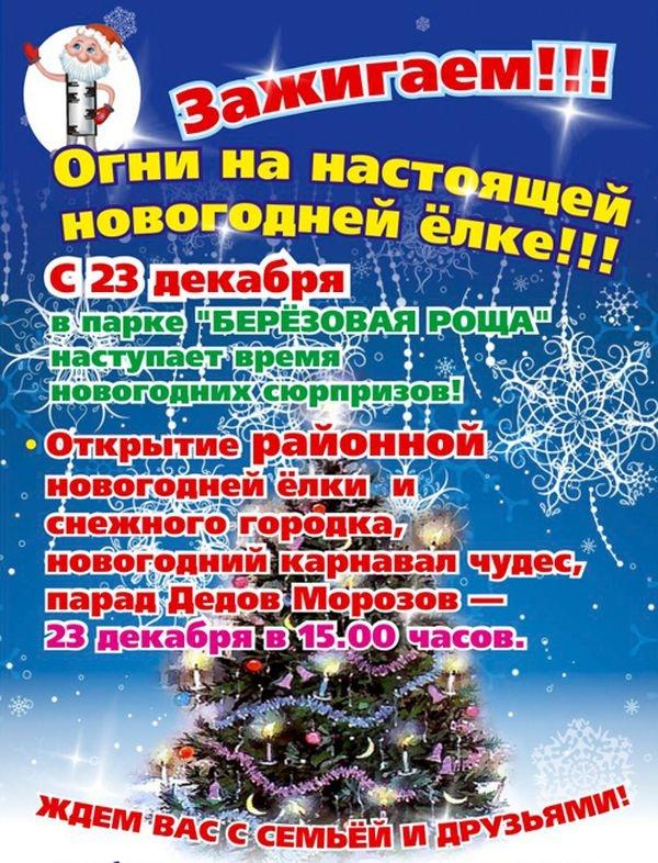 Сценарный план праздника новый год