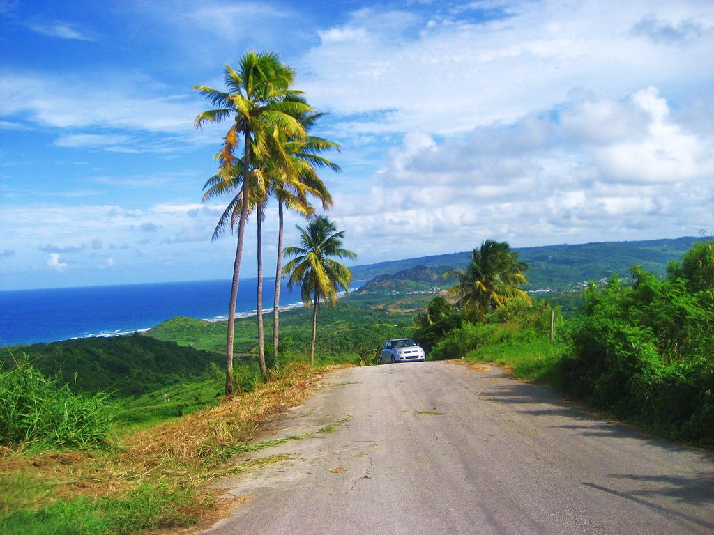Барбадос. Автор: ben.ramirez. Фото:  www.flickr.com