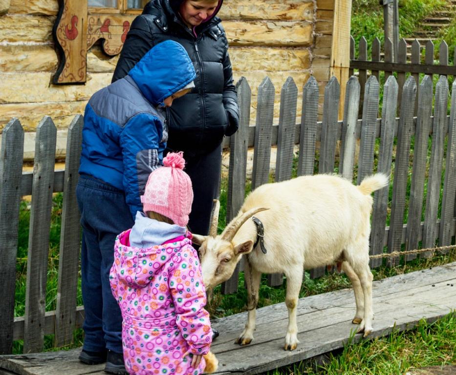 Экотуры с детьми