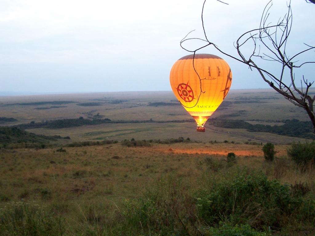 Сафари на воздушном шаре. Автор: collinj. Фото:  www.flickr.com