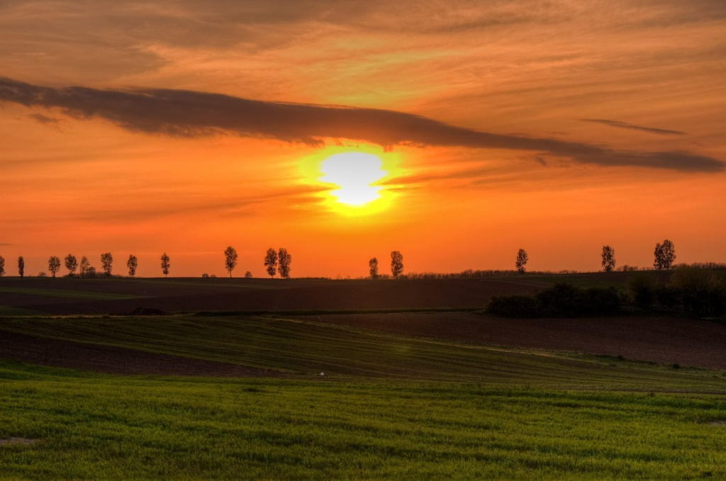 Автор: Vio Oprea. Фото:  www.flickr.com
