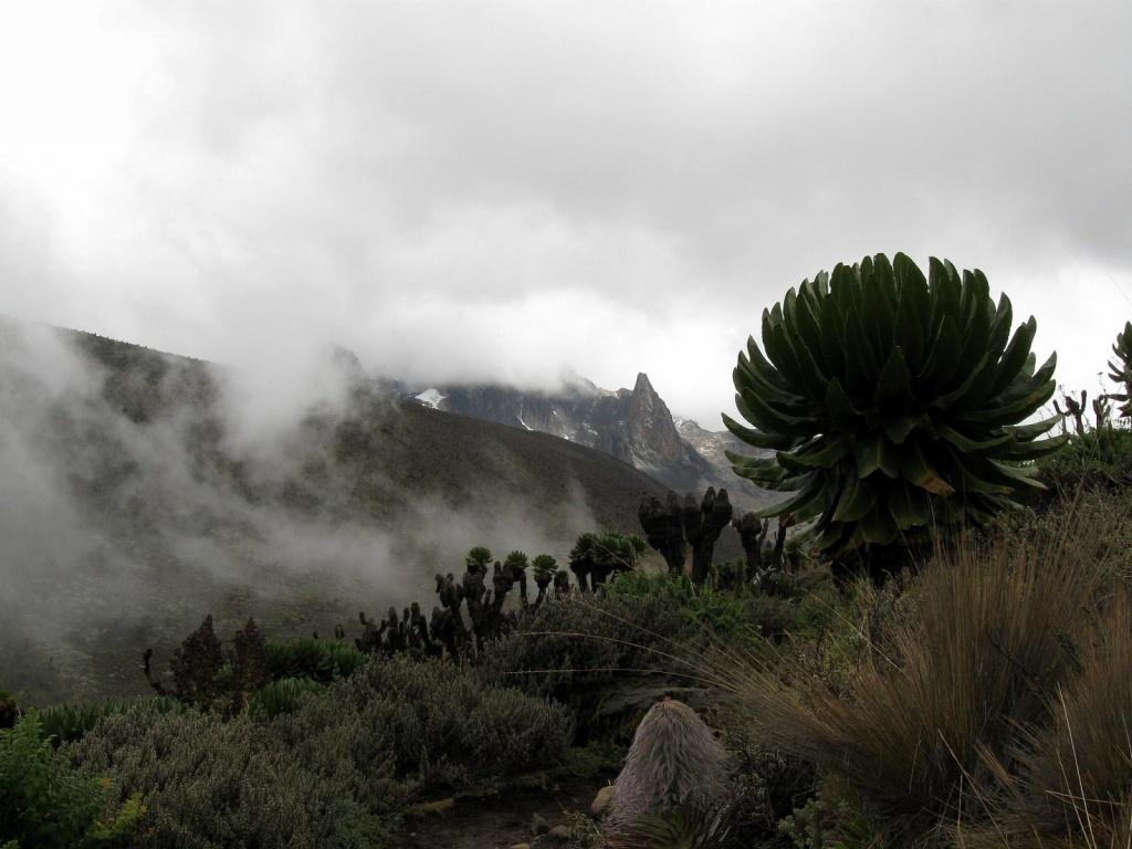 Долина Телеки, Маунт-Кения. Автор: . Фото:  www.flickr.com