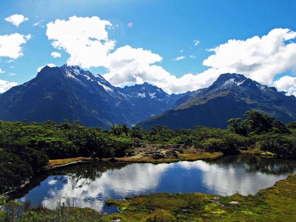 Новая Зеландия. Автор: GregTheBusker. Фото:  www.flickr.com