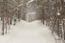 Первая городская лыжня