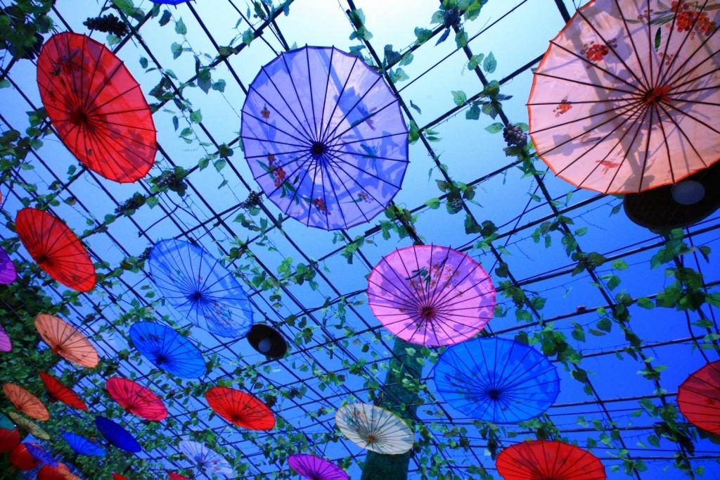 Китайские зонтики. Автор: LASZLO ILYES. Фото:  www.flickr.com