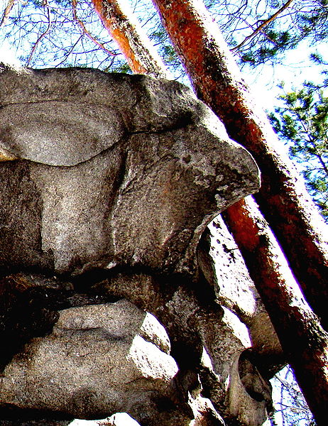Рисунки на камне в древности