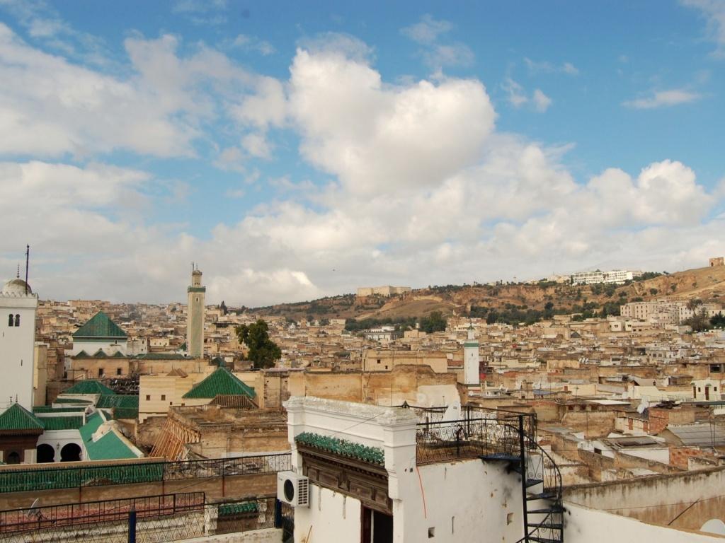 Автор: Amira Elwakil. Фото:  www.flickr.com