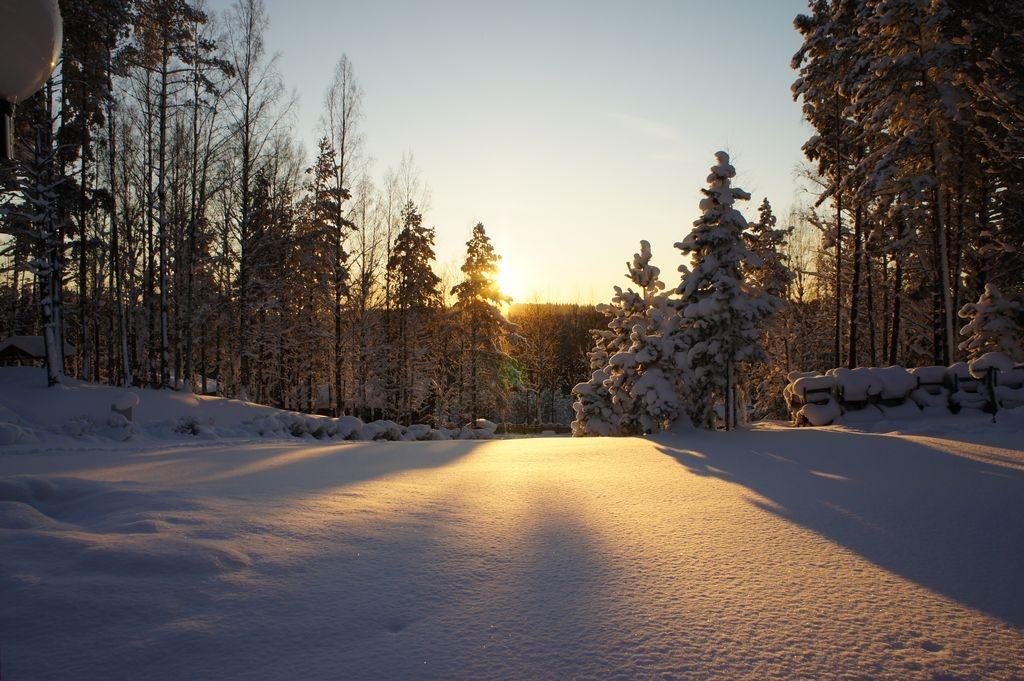 Фото: zoldol.ru