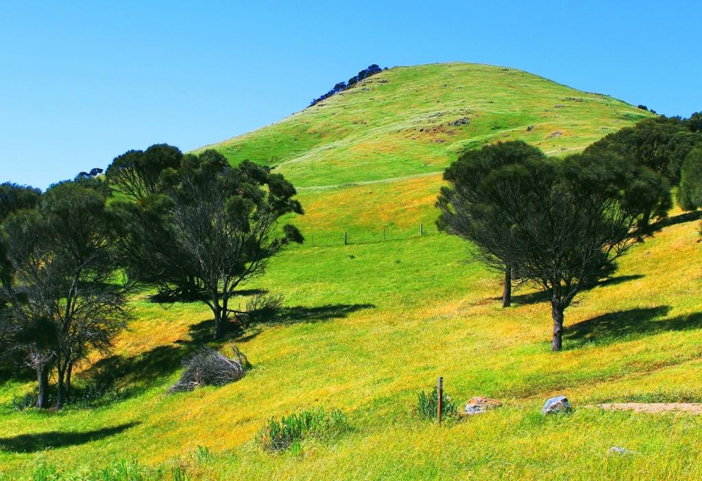Австралия. Автор: Leshaines123. Фото:  www.flickr.com