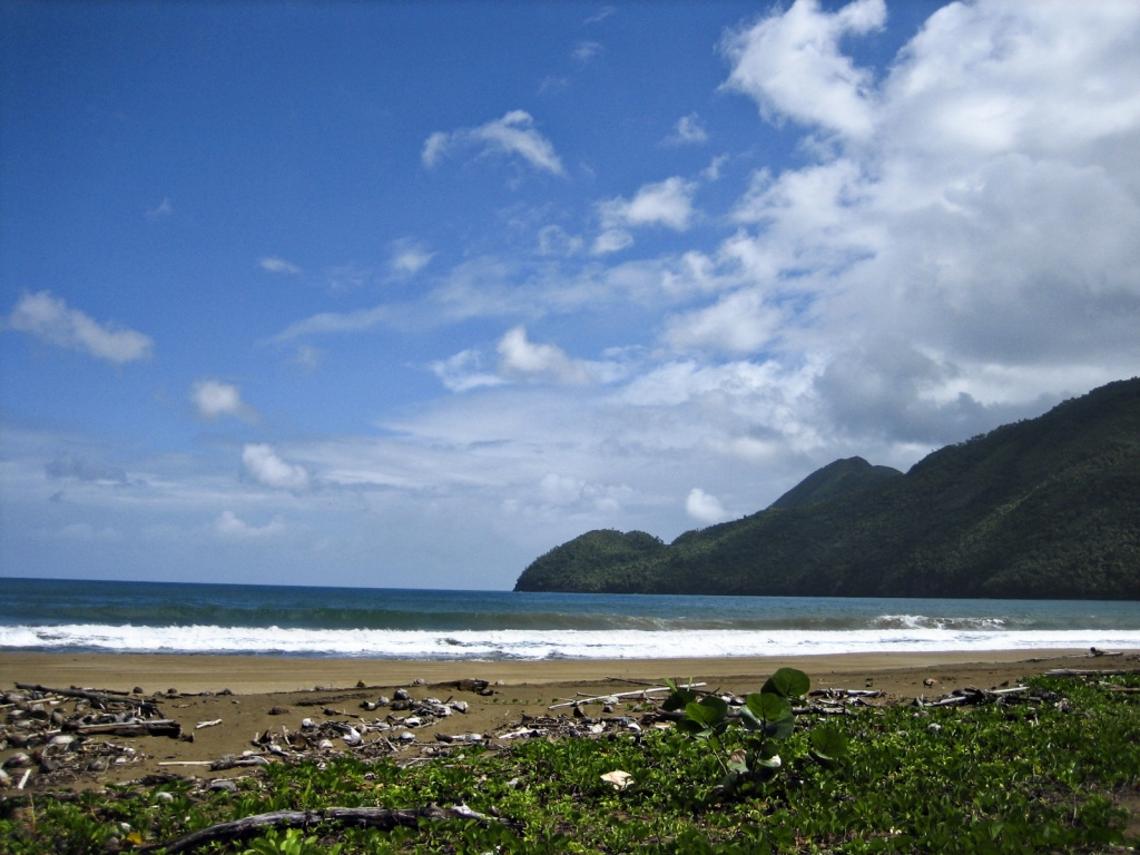 Автор: Liz Saldaña. Фото:  www.flickr.com