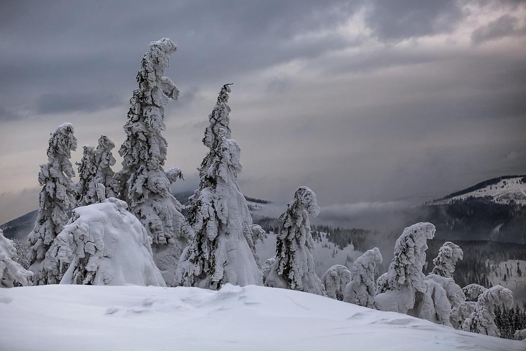 Автор: PolandMFA. Фото:  www.flickr.com