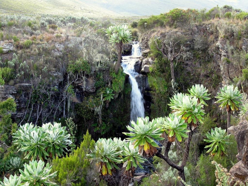 Водопад в Национальном парке Маунт-Кения. Автор: . Фото:  www.flickr.com