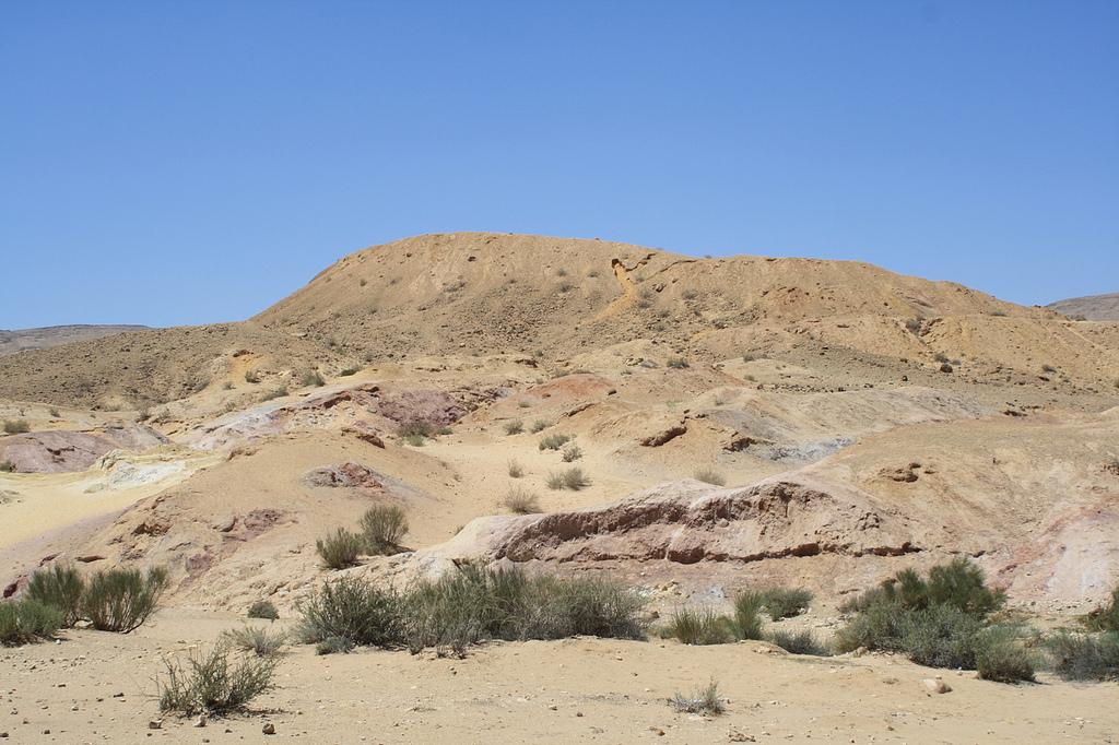 Экскурсии в пустыни Негев. Автор: Jean & Nathalie. Фото:  www.flickr.com
