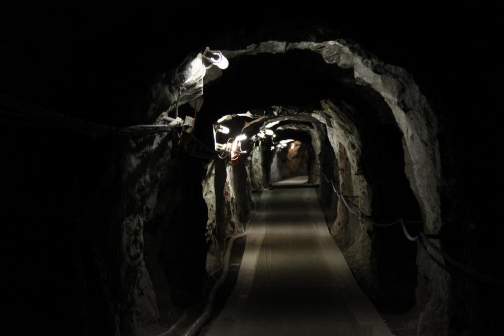 Тоннель к смотровой площадке. Фото:  Cristian Bortes