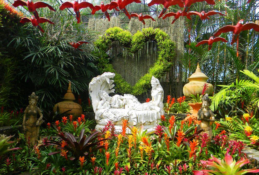 Тропический сад Нонг Нуч.  Фото: Анжелика Бондарь