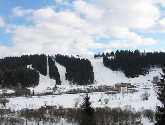 Горнолыжные трассы. Фото: ski.spb.ru