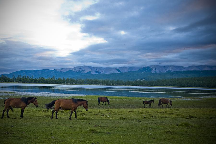 Озеро Хубсугул. Автор: Enkhtuvshin's 5DmkII. Фото:  www.flickr.com