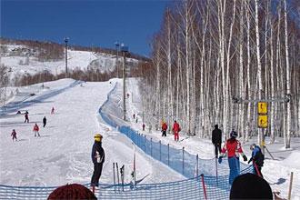 Бугельный подъемник. Фото: www.ski-bannoe.ru