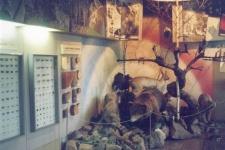 Прокопьевский краеведческий музей