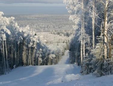 Фото: www.pihtovy-greben.ru