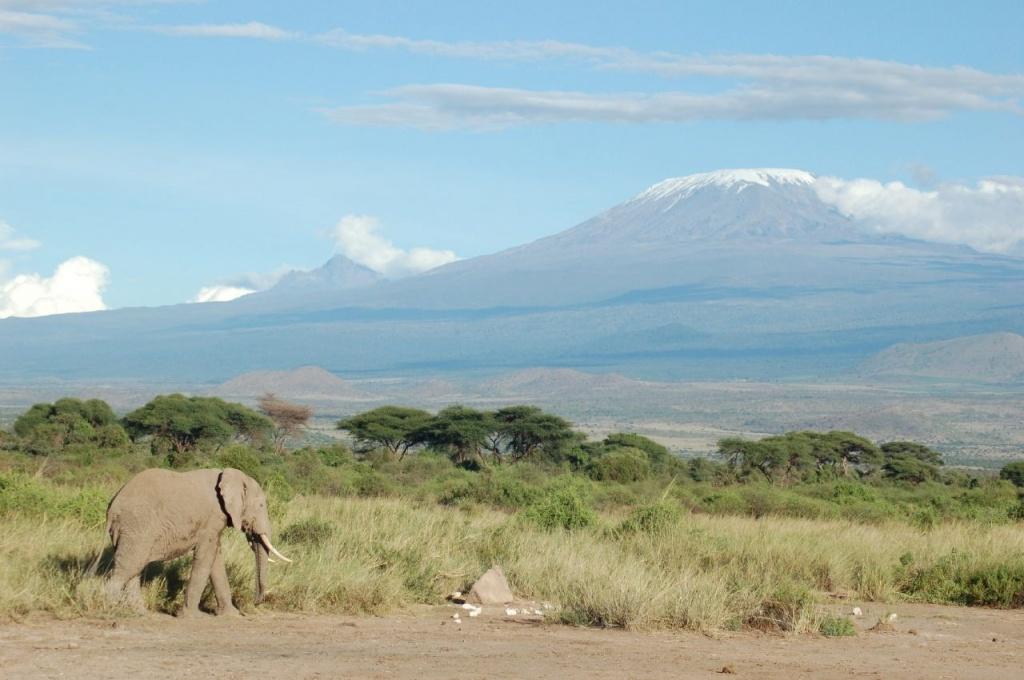 Килиманджаро. Автор: cjasik. Фото:  www.flickr.com