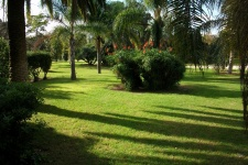 Парк «Хардинес дель Реаль» (Jardines del Real)