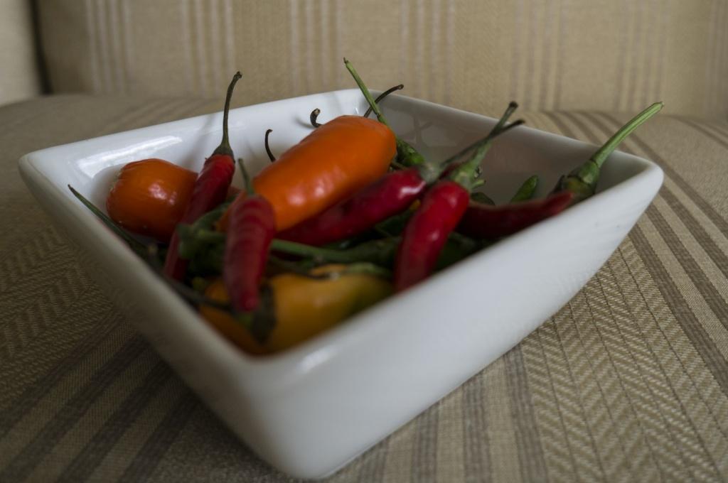 Автор: Daniel. Фото:  www.flickr.com