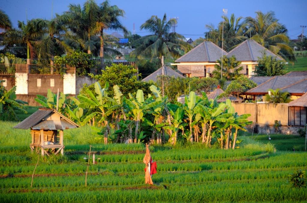Фото:   Jeda Villa Bali