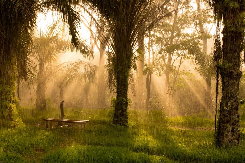 Автор: andré thiel. Фото:  www.flickr.com