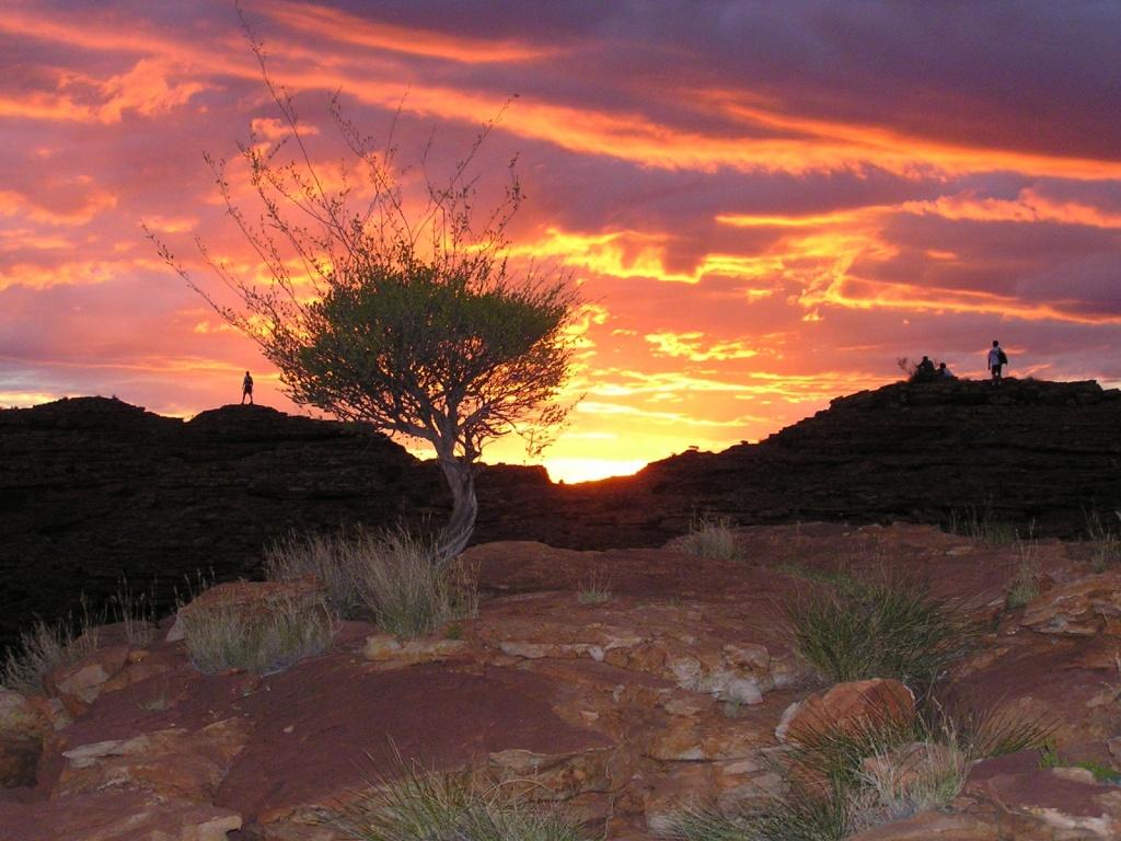 Австралия. Автор: ogwen. Фото:  www.flickr.com