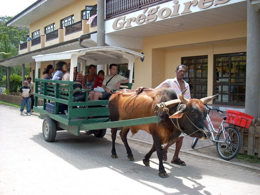 Местный транспорт. Автор: Fabio Calamosca. Фото:  www.flickr.com