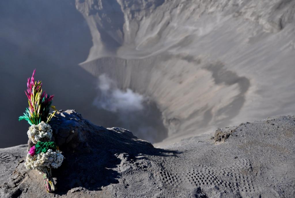 Автор: Thomas sauzedde. Фото:  www.flickr.com