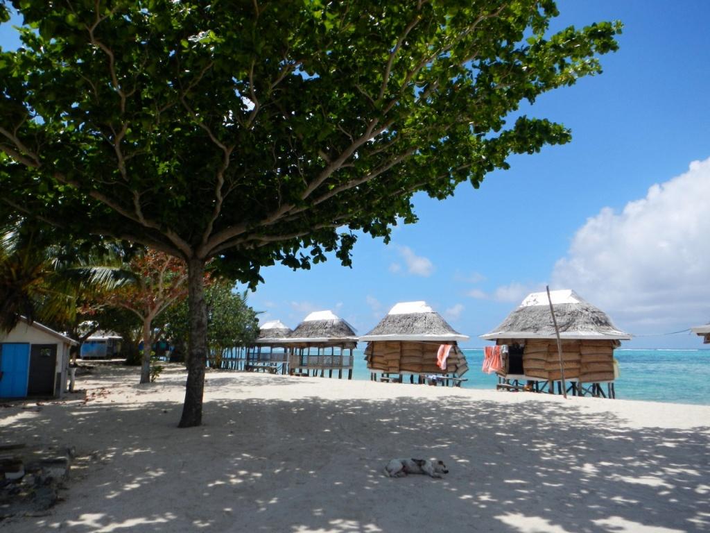 Самоа. Автор: mikigroup. Фото:  www.flickr.com