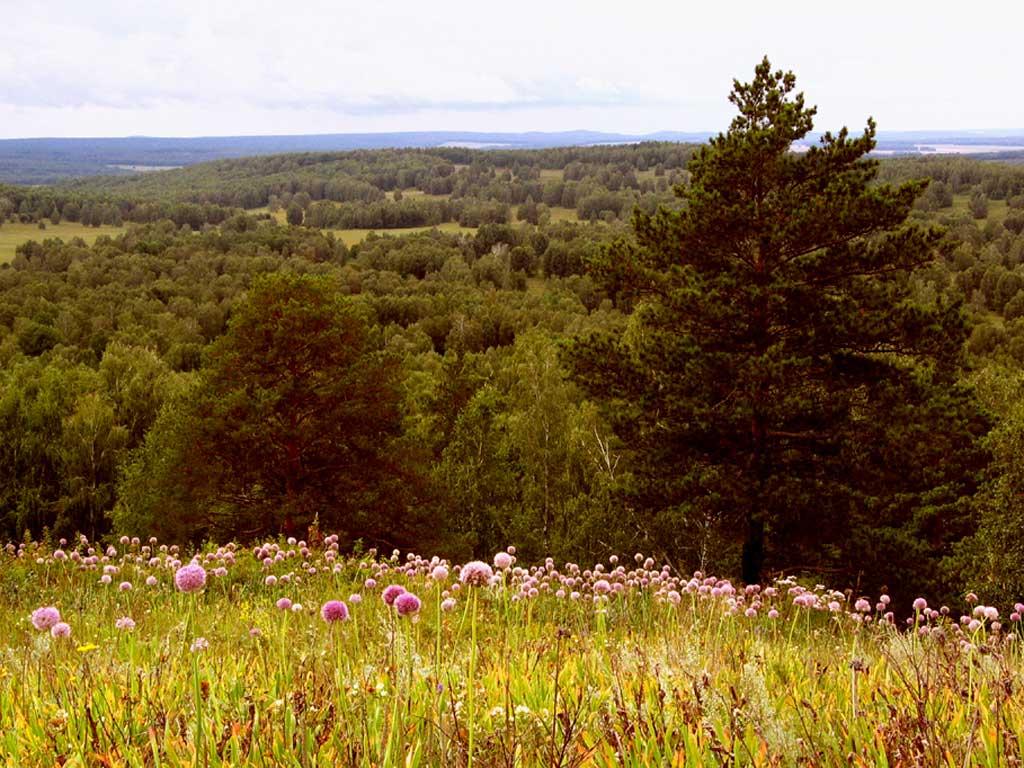 Вид с горы Улантова. Автор фото: Балацкий Н. Н.    www.balatsky.ru