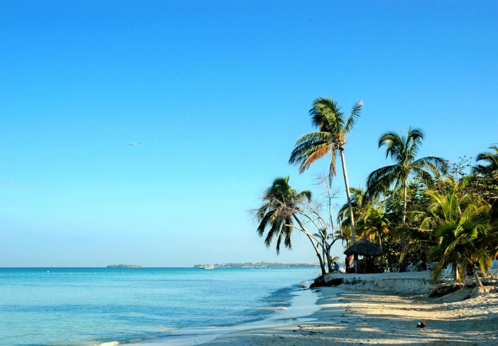 Ямайка. Фото с сайта  tonkosti.ru