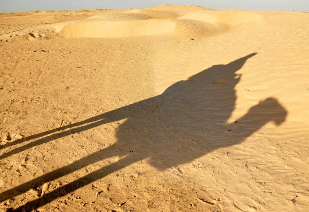 Автор: Dennis Jarvis. Фото:  www.flickr.com