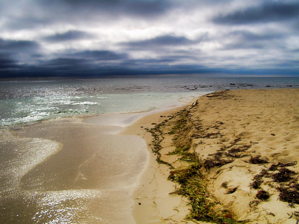 Пляж. Автор: trishhartmann. Фото:  www.flickr.com