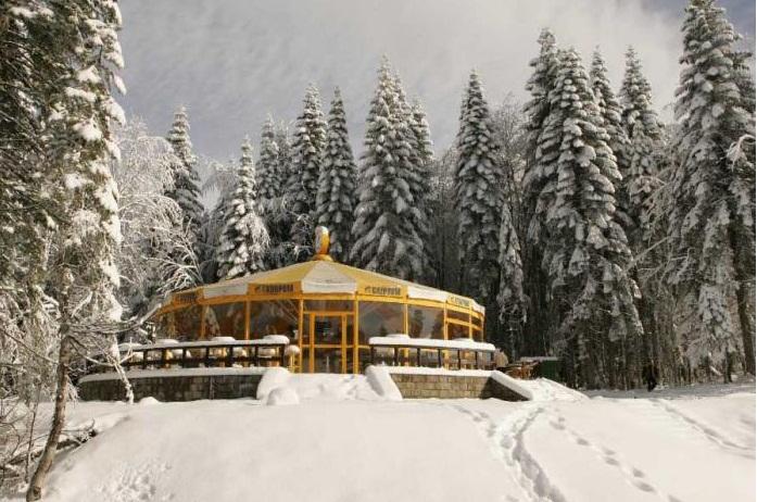 Ширм-бар. Фото: www.grandhotelpolyana.ru