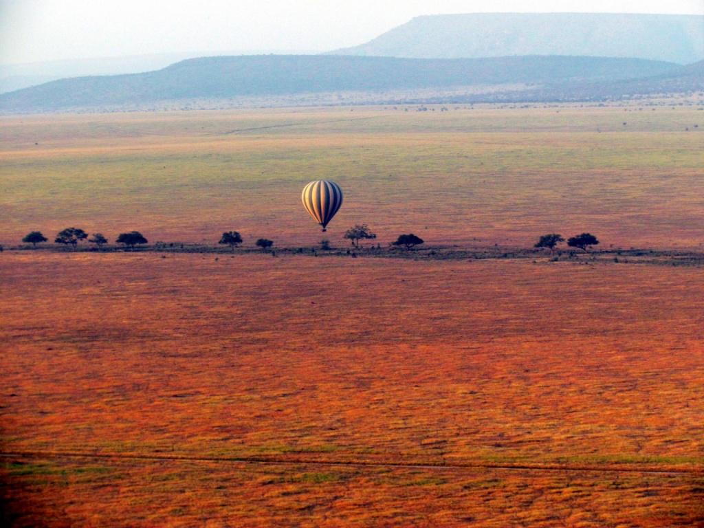 Сафари на воздушном шаре. Автор: David Berkowitz. Фото:  www.flickr.com