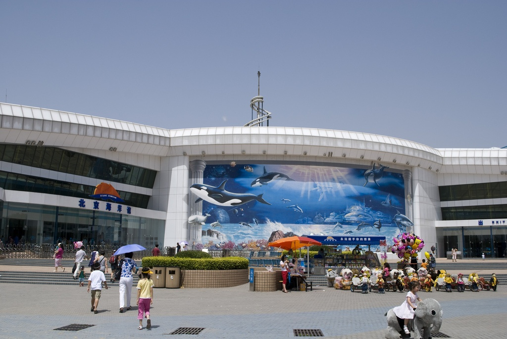 Зоопарк в Пекине. Автор: buyalex. Фото:  www.flickr.com