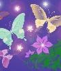 Рисунок бабочки.