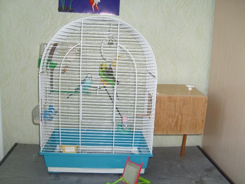 Домик попугаю своими руками 57