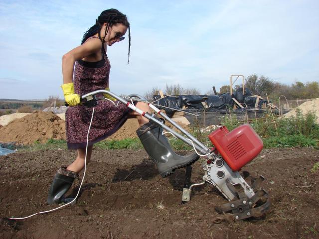 Электрофореза для обработки почвы своими руками 84