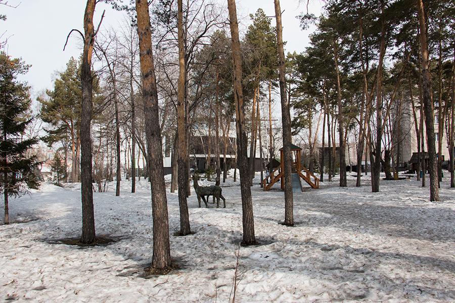 Одно из самых важных преимуществ ЖК «Европейский» — это расположение вблизи пышных сосновых и лиственных парков. Насладиться прогулкой можно, не уезжая далеко от дома.