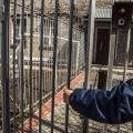 Осуждённому предстоит провести 13 лет в колонии строгого режима