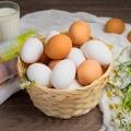 Яйца из Новосибирской области едят по всей России, в Монголии и Средней Азии