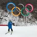 Денис Тян прилетел в Корею 28 января, в Новосибирск вернулся 8 марта