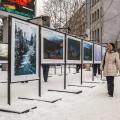 Выставка открылась сегодня на площади Ленина со стороны Первомайского сквера
