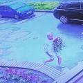 Молодого человека жители квартала уже прозвали «флористом»